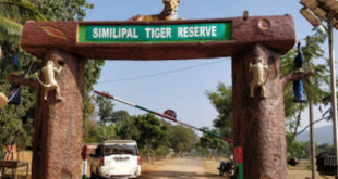 Similipal National Park reopens for public